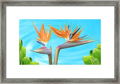 Birds Of Paradise. Couple Framed Print by Ben and Raisa Gertsberg