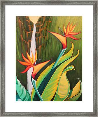 Birds Of Paradise Framed Print