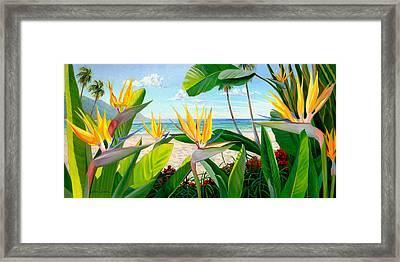Birds Of Paradise Framed Print by Steve Simon