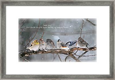 Birds On A Branch Framed Print