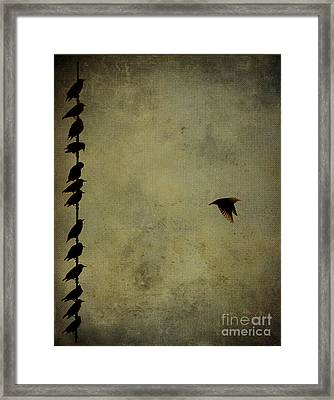 Birds On A Wire 2 Framed Print by Jim Wright