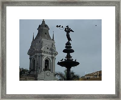 Birds On Fountain Framed Print