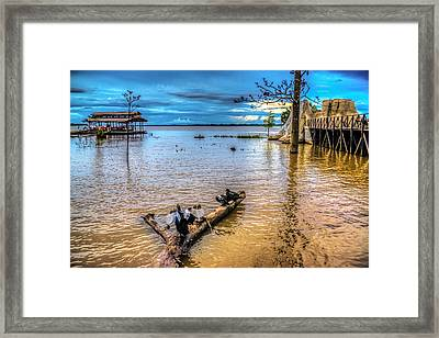 Birds On Log Framed Print