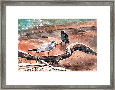 Birds On The Constance Lake In Winter Framed Print by Miki De Goodaboom