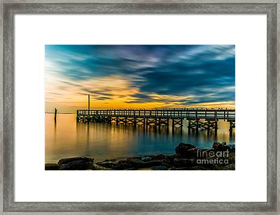 Birds On The Dock Framed Print