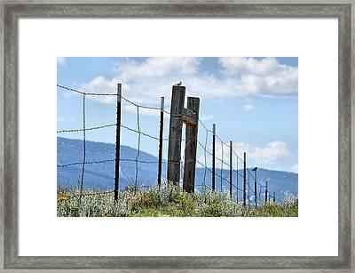 Birds On The Fence Framed Print