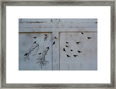 Birds On The Garage Framed Print