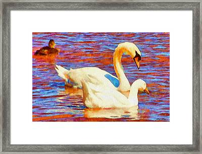 Birds On The Lake Framed Print by Jeff Kolker