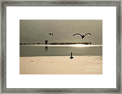Birds On Thine Ice Framed Print by Brian Arnold