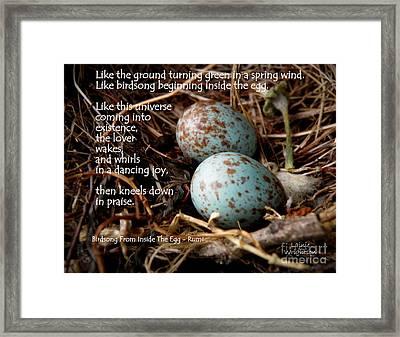 Birdsong From Inside The Egg Framed Print