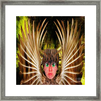 Birdy Framed Print by Neil Finnemore