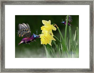 Birguana Taster Framed Print by Arthur Fix