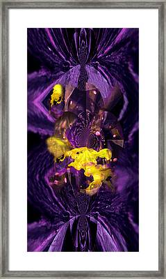 Framed Print featuring the photograph Birth Of Universe by Robert Kernodle