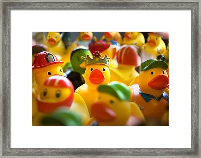 Birthday Ducks Framed Print
