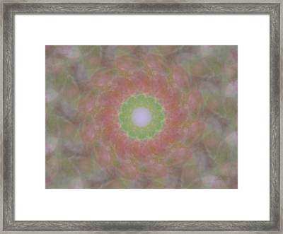 Birthing Mandala 1 Framed Print by Rhonda Barrett