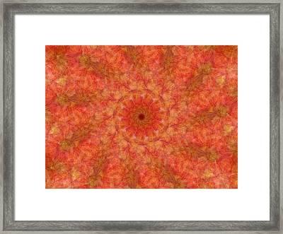 Birthing Mandala 17 Framed Print