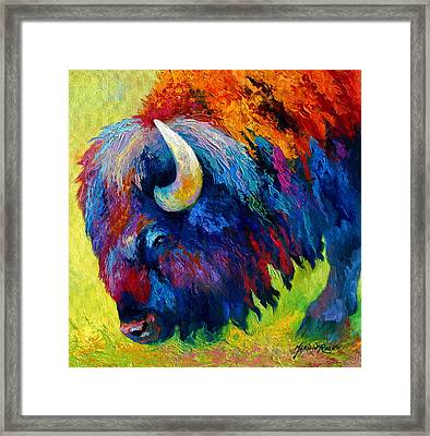 Bison Portrait II Framed Print