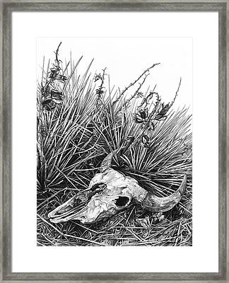 Framed Print featuring the painting Bison Skull by Aaron Spong