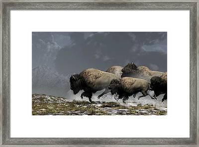 Bison Stampede Framed Print by Daniel Eskridge