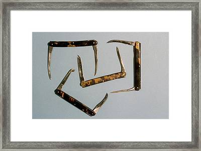 Bistoury Knives Framed Print by Science Photo Library