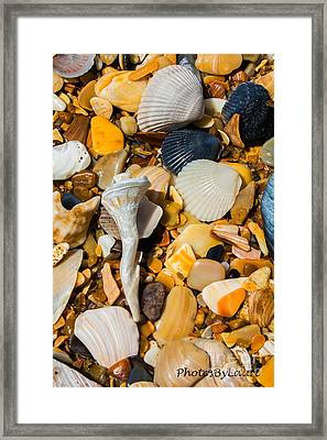 Bits And Pieces Framed Print by Laurinda Bowling