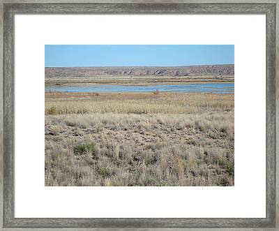 Bitter Lake Framed Print by Susan Woodward