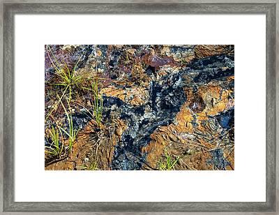 Bitumen Leaching From Tar Sands Framed Print by Ashley Cooper