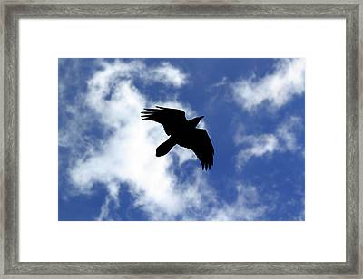Black Above Framed Print