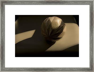 Framed Print featuring the photograph Study Of Shadows And Natural Light. by Renee Anderson