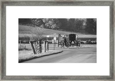 Black And White Amish Horse And Buggy Framed Print