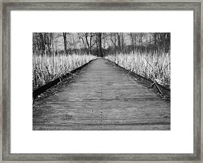 Black And White Bridge Over Swamp Framed Print