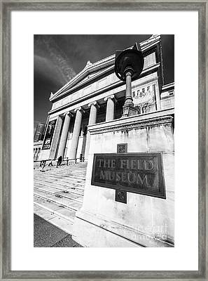 Black And White Chicago Field Museum Framed Print
