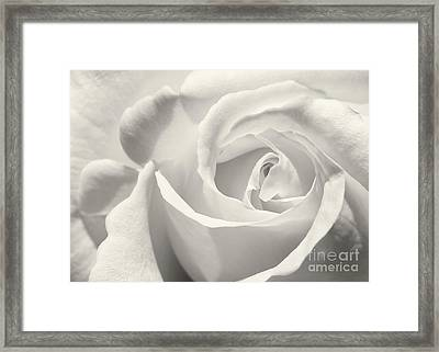 Black And White Curves Framed Print by Sabrina L Ryan