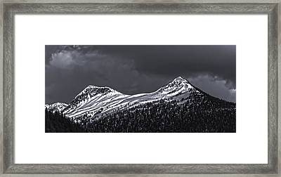 Black And White Deer Mountain  005 Framed Print