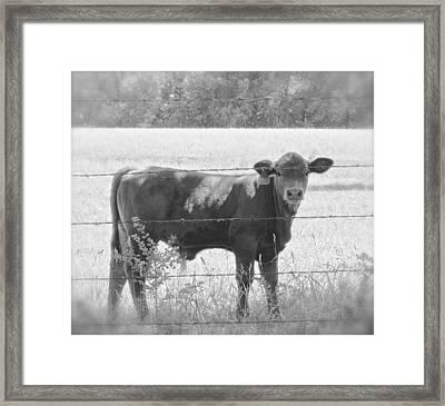 Black And White Down Home Framed Print