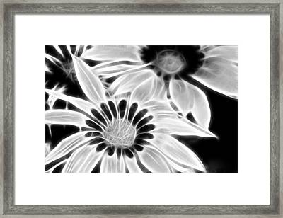 Black And White Florals Framed Print