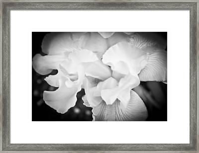 Black And White Hibiscus Framed Print