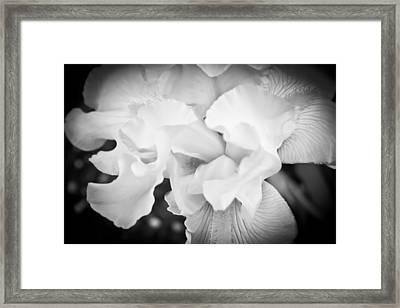 Black And White Hibiscus Framed Print by Kara  Stewart