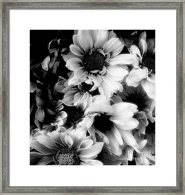 Black And White Framed Print by Kathleen Struckle