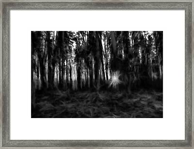 Black And White Monochrome Artistic Painterly Sun Between Trees  Framed Print
