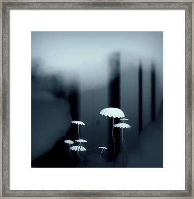 Black And White Mushrooms Framed Print by GuoJun Pan