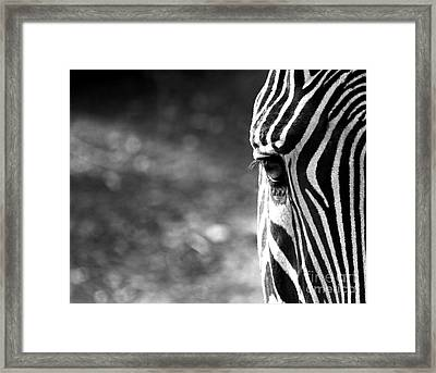 Black And White On Black And White Framed Print