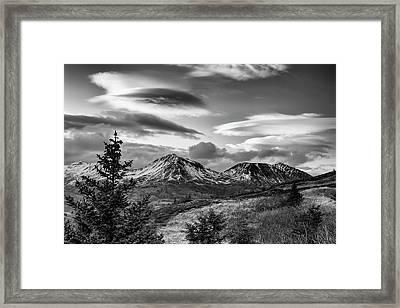 Black And White Photo Of Lenticular Framed Print