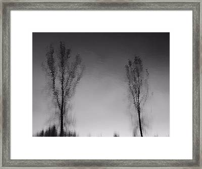Black And White Reflection Trees Framed Print by Dan Sproul