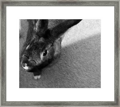 Black And White Silver Framed Print by Jennifer Fliegel