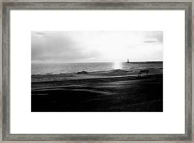 Winter On Lake Michigan With Beach And Lighthouse Pier At Sunset Black And White  Framed Print by Rosemarie E Seppala