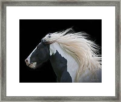 Black And White Study IIi Framed Print by Terry Kirkland Cook