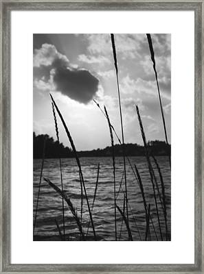 Black And White Sun  Framed Print by Ben Foster