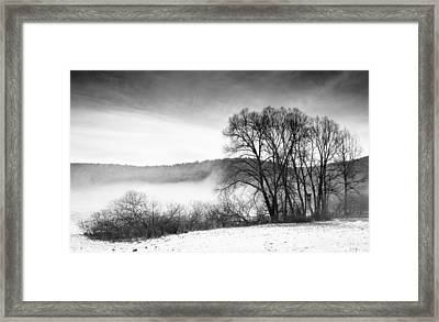 Black And White Winter Landscape With Trees Framed Print by Matthias Hauser