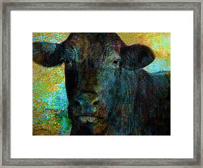 Black Angus Framed Print by Ann Powell